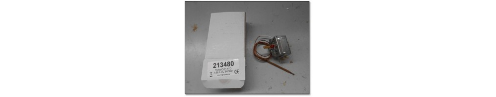 Thermostat / Sonde